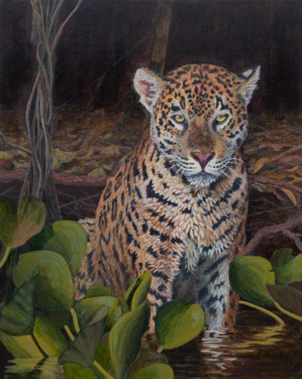 Kerr_Jaguar1