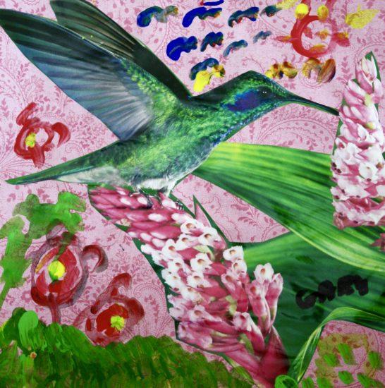 Gary's hummingbird