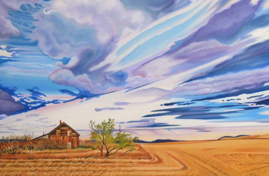 lonely house on the prairie Elissa Anthony