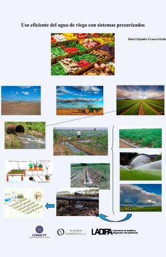 Image Slider Image