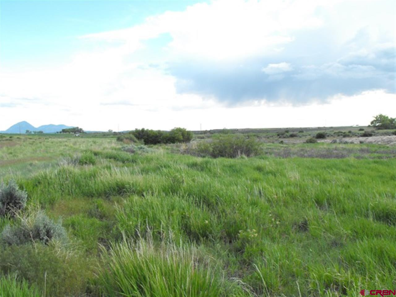 Looking west across property