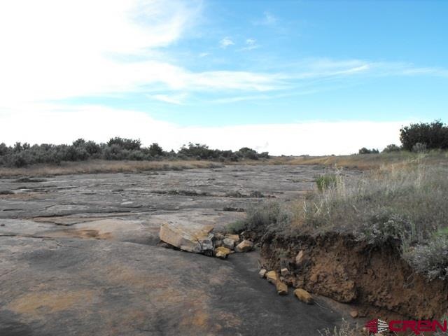 Ripple rock / dry creek bed