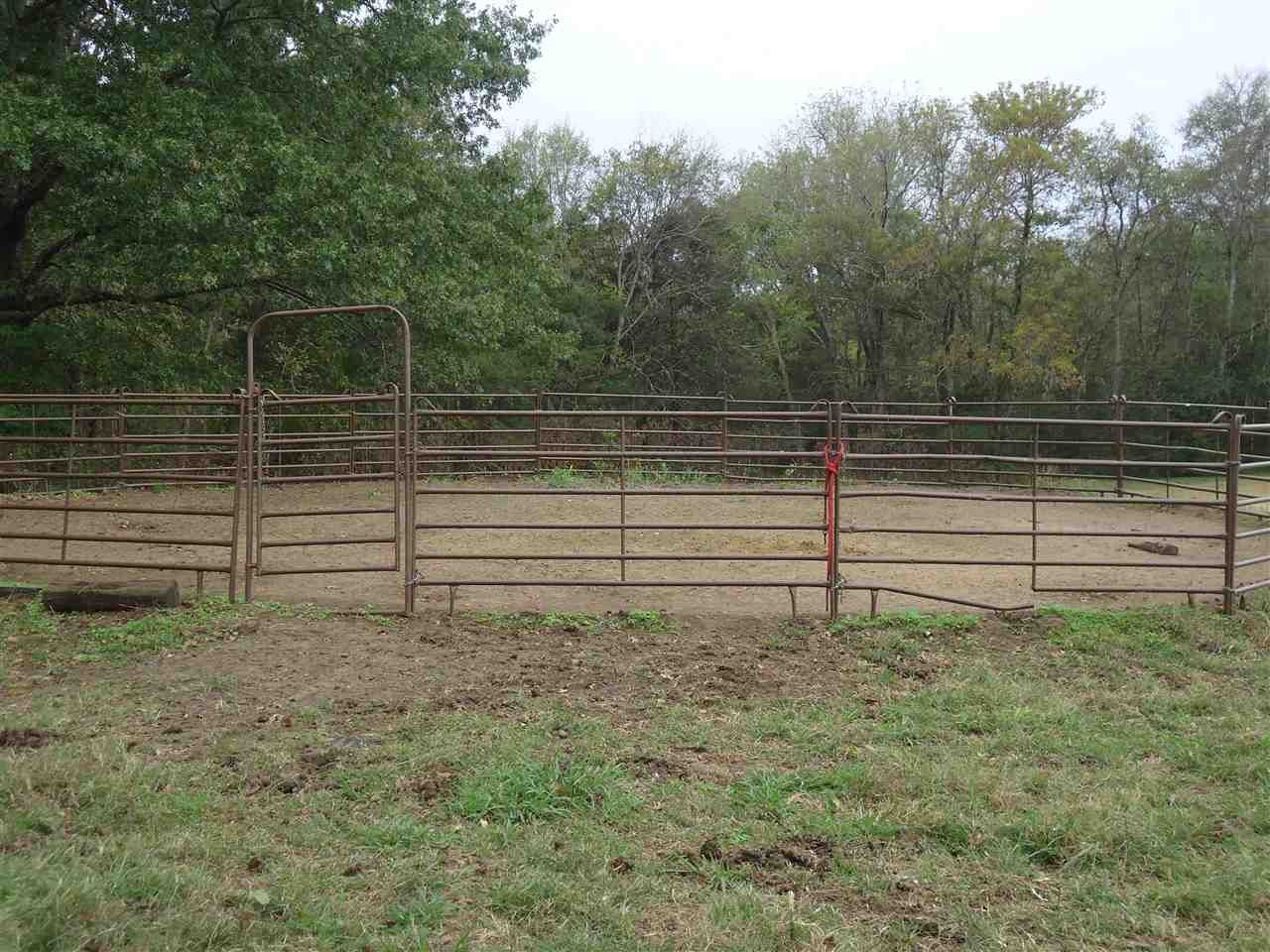 This farm and acreage has everything for your hors