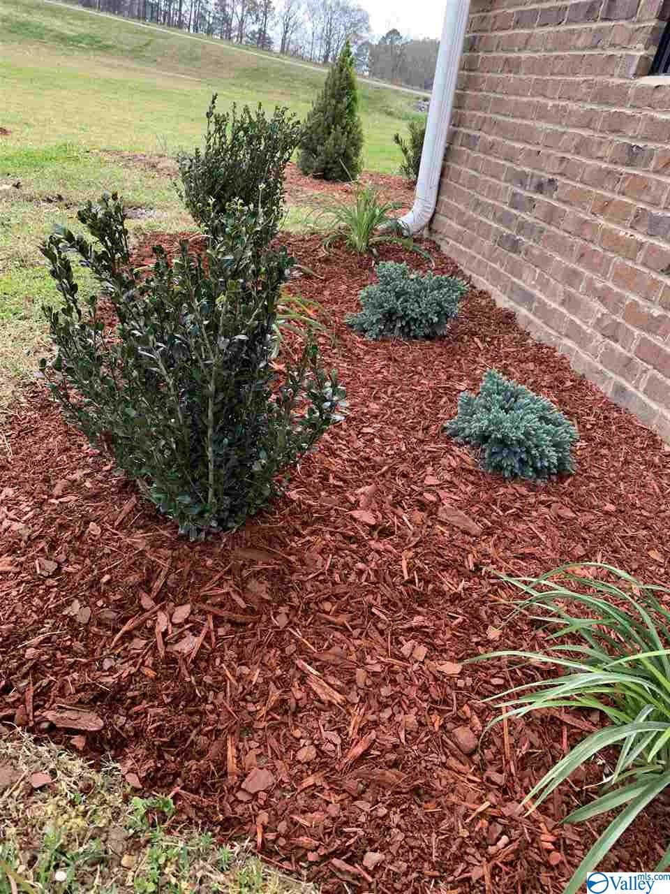 Fresh landscaping and mulch.