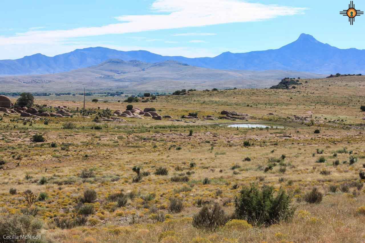 Seasonal water tank with view of Cook\'s Peak