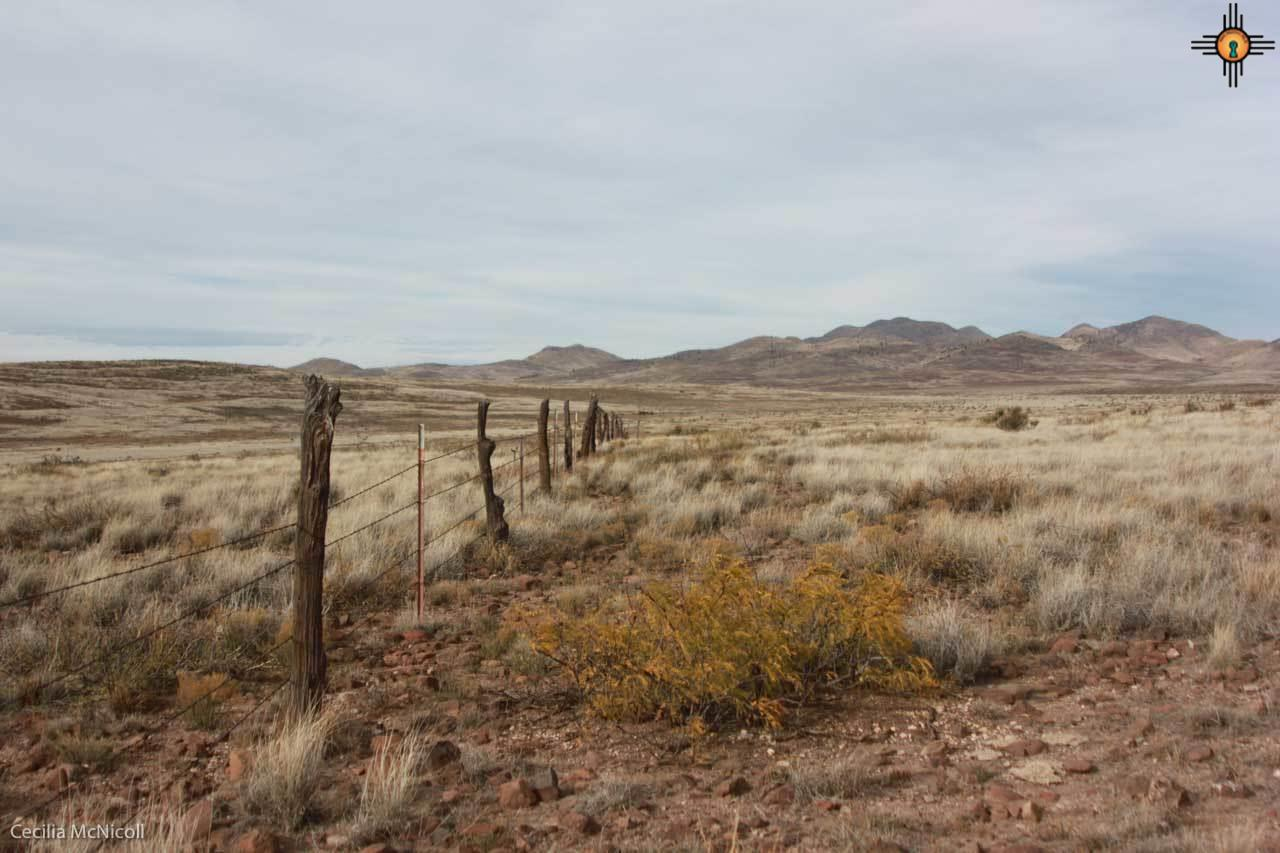 4 strand barbed wire fence