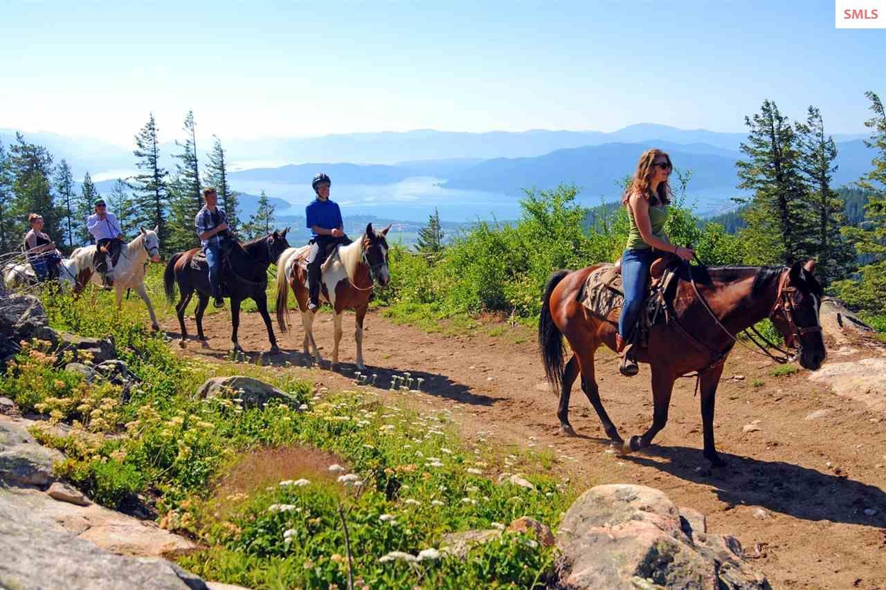 Fresh mountain air, friendly horses