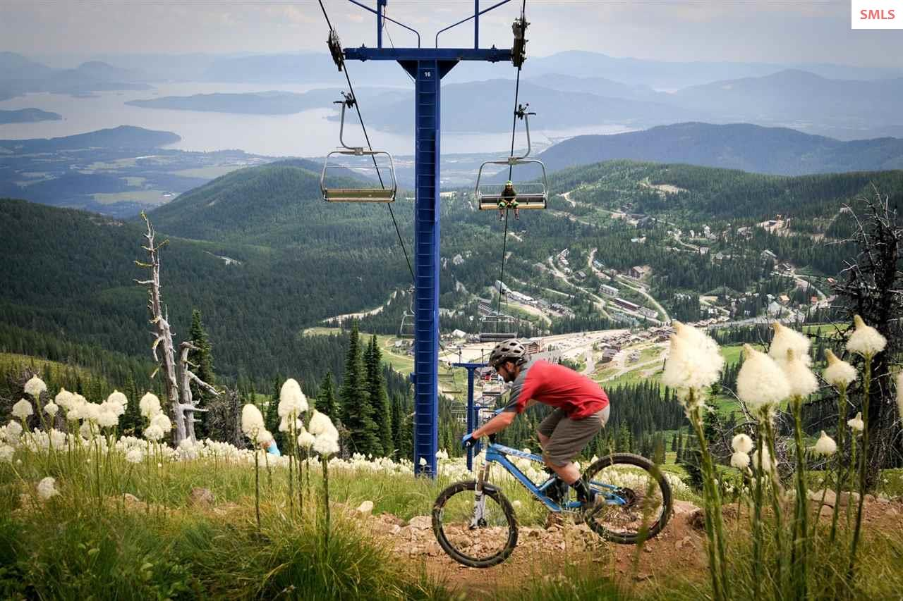 Cross Country and Downhill Trails