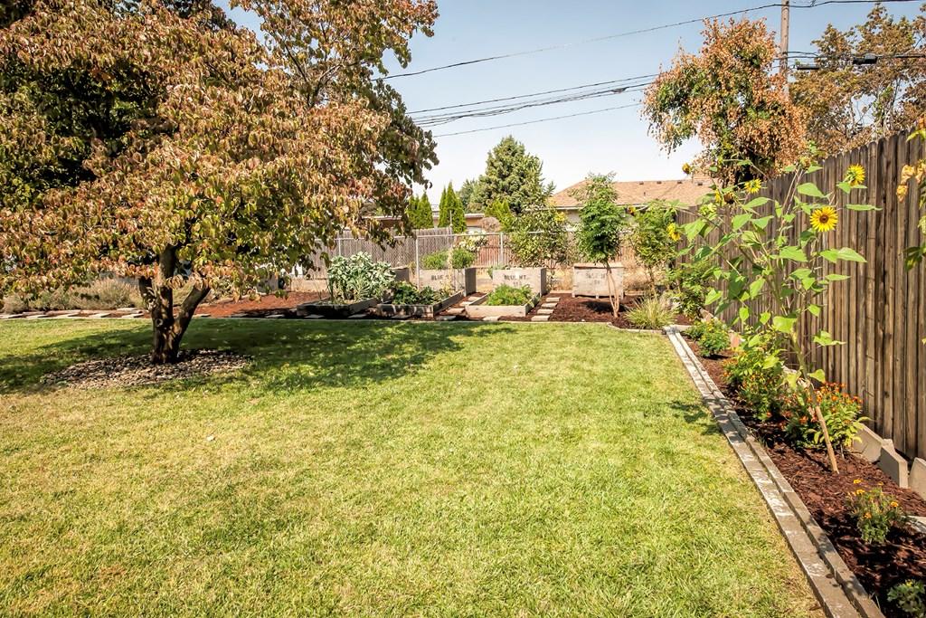 Large backyard w/ pink dogwood