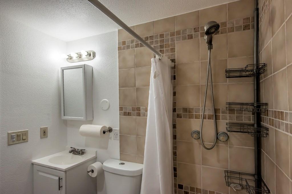 Bathroom 2 - Basement
