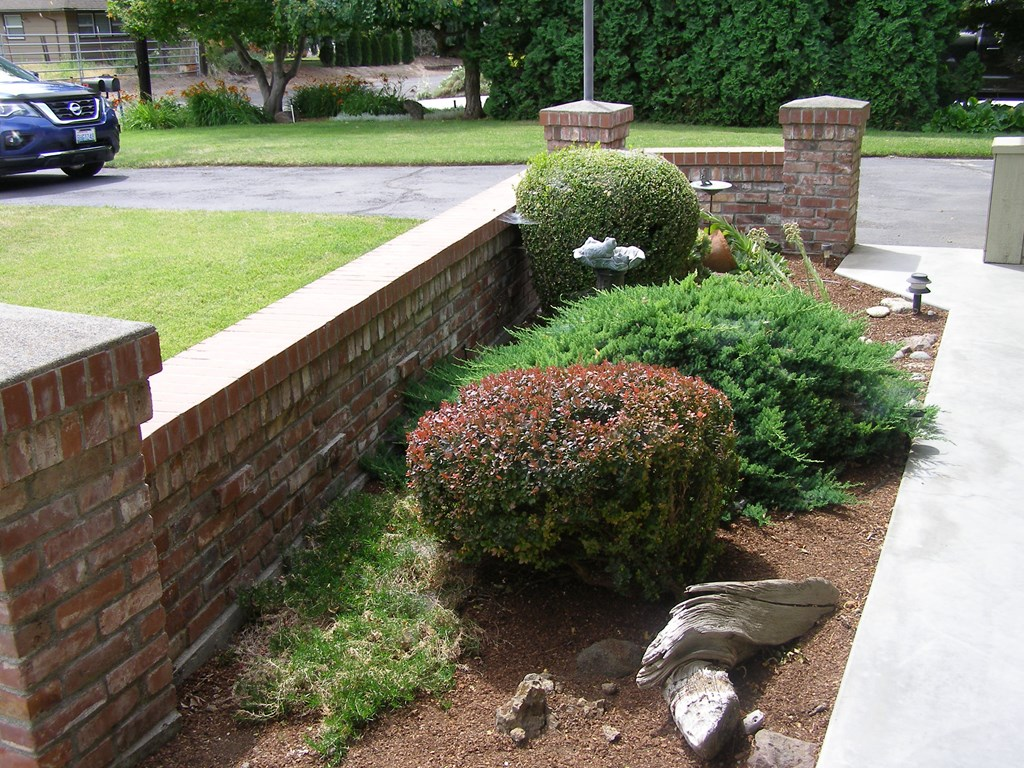 Front entrance plantings
