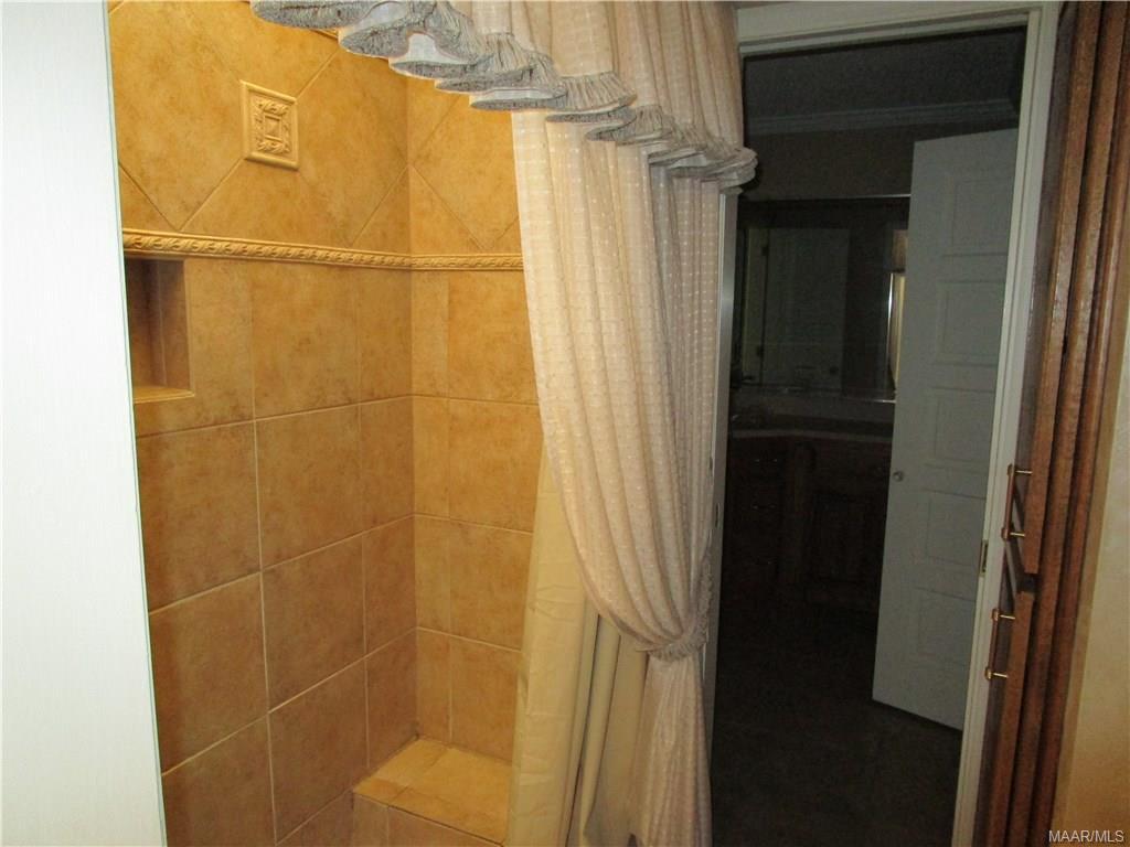 Shower in updated bath