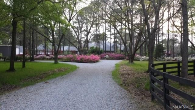 View of property with azaleas blooming in the Spri