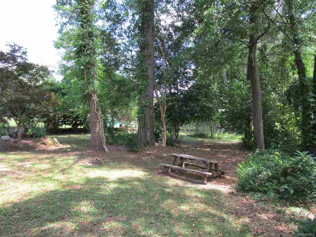 Garden areas in back yard