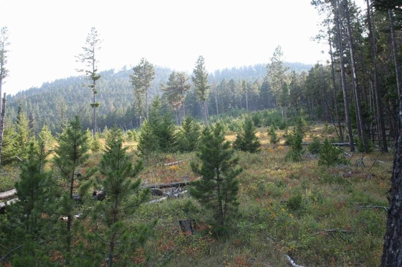 https://s3-us-west-2.amazonaws.com/cevado.idx1/helena/288366/little-wolf-creek-rd-wolf-creek-59648_3.jpg