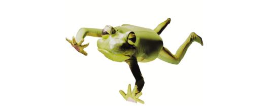 Imago Theatre, Frogz