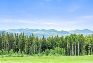 38+ Acre Parcel with Awesome Views of the Rocky Mountains