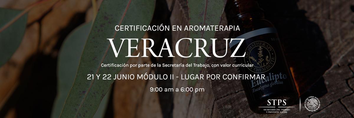 Veracruz21jun