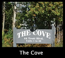 the-cove-thumb