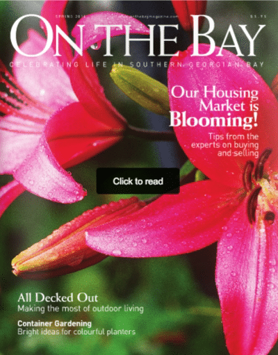 on-the-bay-issue-cover