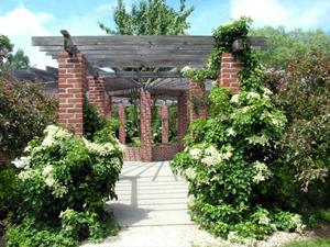Arboretum Collingwood Ontario