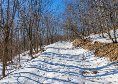 Lot-14-Scenic-Caves-Road-MLS-and-Web-3