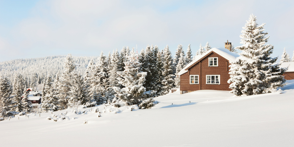 Chalets for Rent in Blue Mountain, Ontario