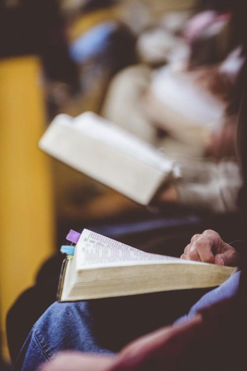 church, service, sitting, reading, bible, bibles