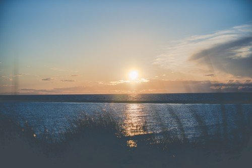 sun, sunset, colorful, grass, weeds, ocean, water, lake