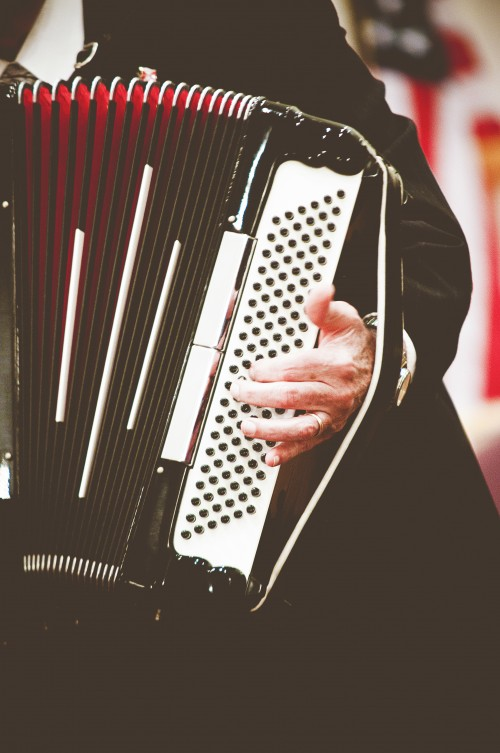 accordion, music, instrument, player