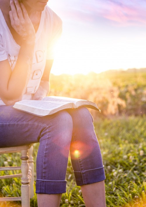 woman, bible, study, devotions, field, chair, sun, sunset
