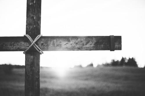 cross, easter, crucifixion, field, jesus, tree, rugged, resurrection, sunday, calvary