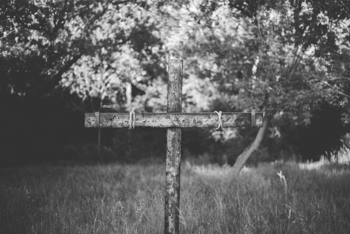cross, easter, crucifixion, field, jesus, tree, rugged, resurrection, sunday, calvary