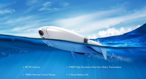 Dolphin main
