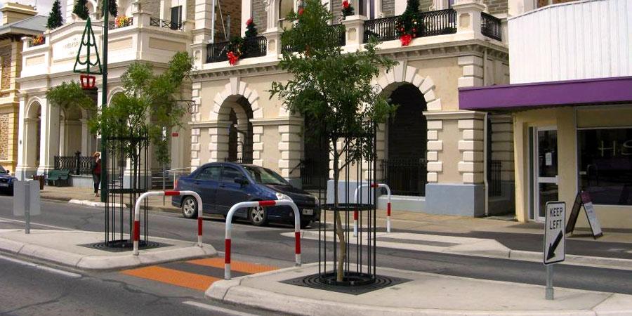 Murray Street trees