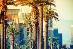 Las Vegas trees