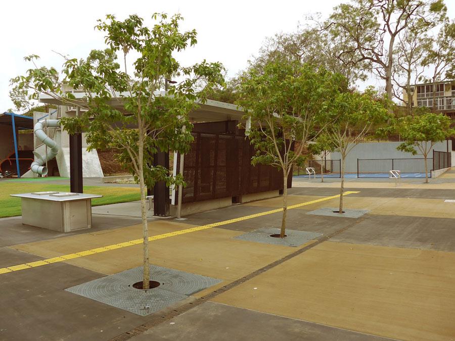 trees in Frew Park