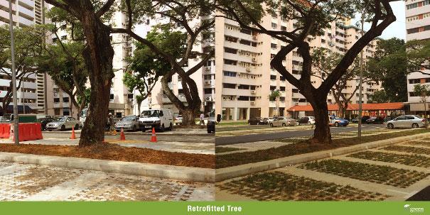 Retrofitted-Tree