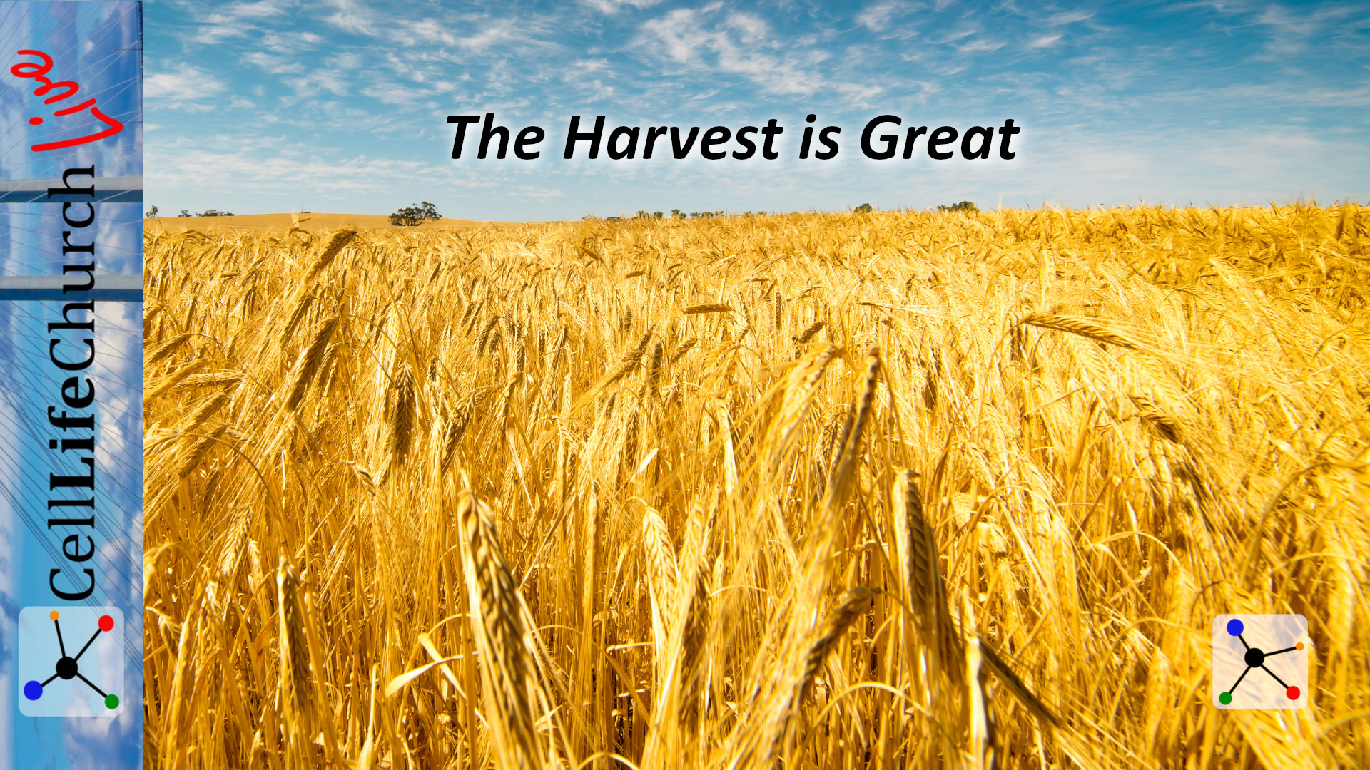 The Harvest Is Great