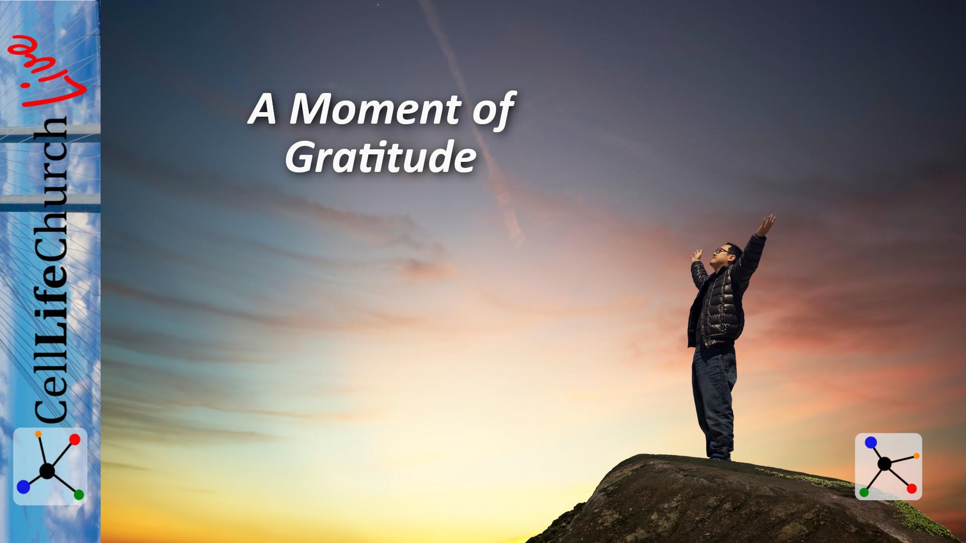 A Moment of Gratitude