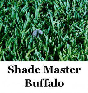 shade-master-logo2