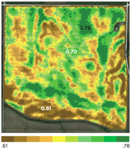 Lower variability in crop health - June 2013