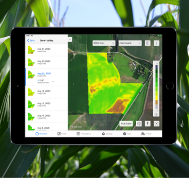 Tablet in crop