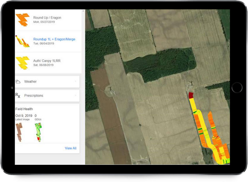 Application in the field, matching with the areas of low vegetation shown in the scouting map.