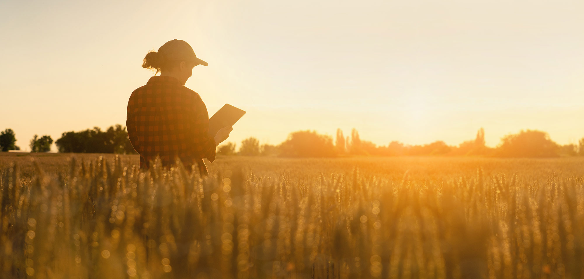 A woman in a field holding an iPad.