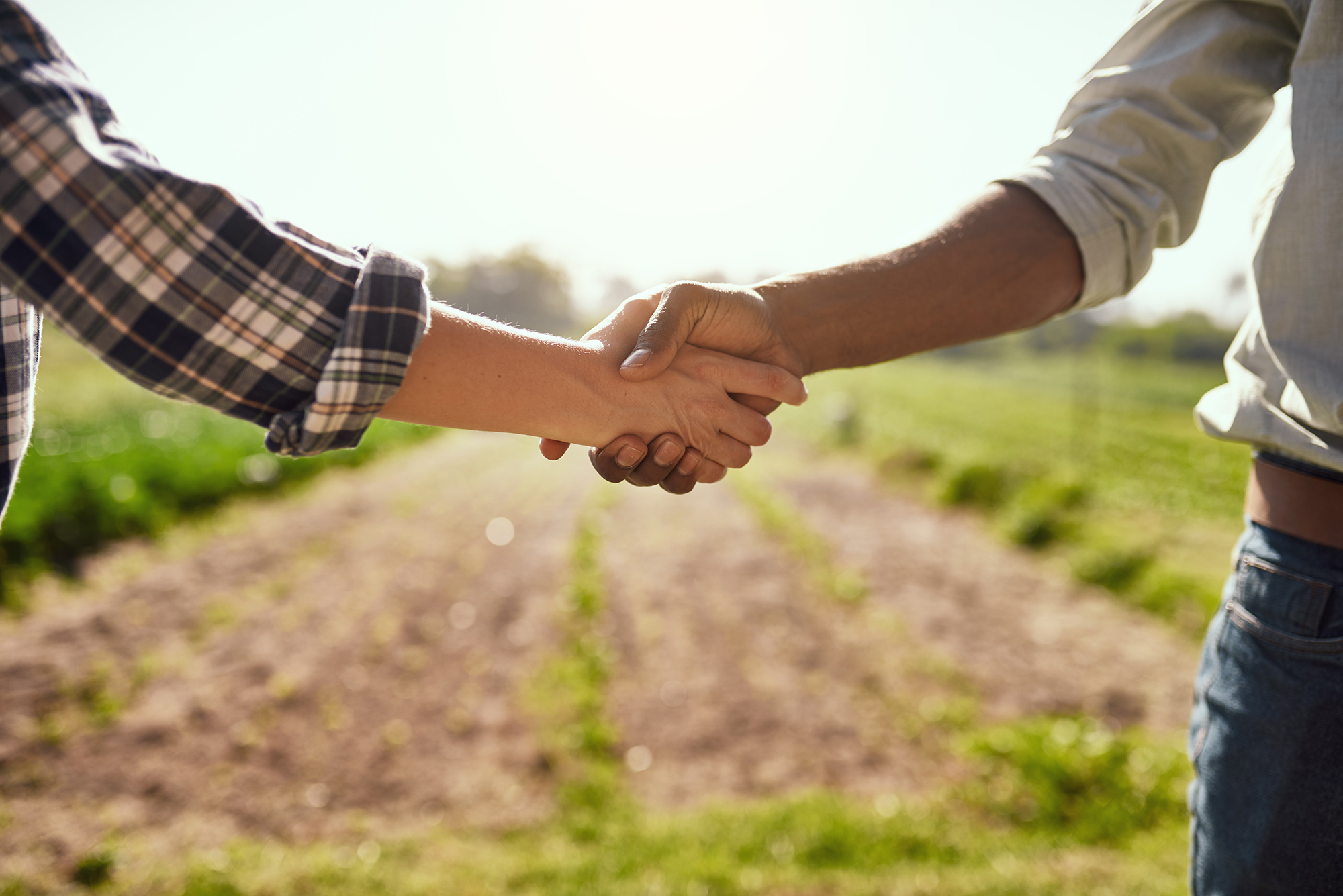 Two people shaking hands in a farmer's field.