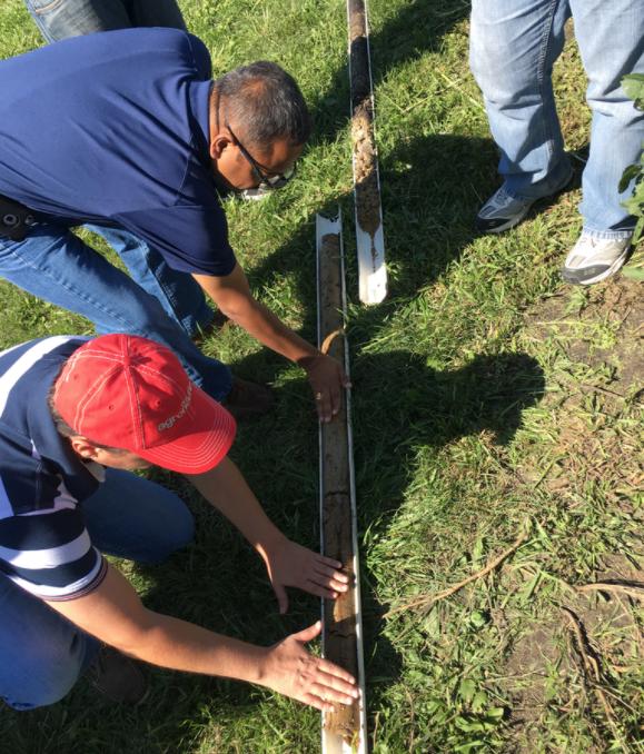 Soil Core Examination