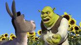 Shrek360x640 2