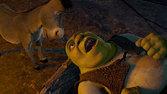 Shrek360x640 7