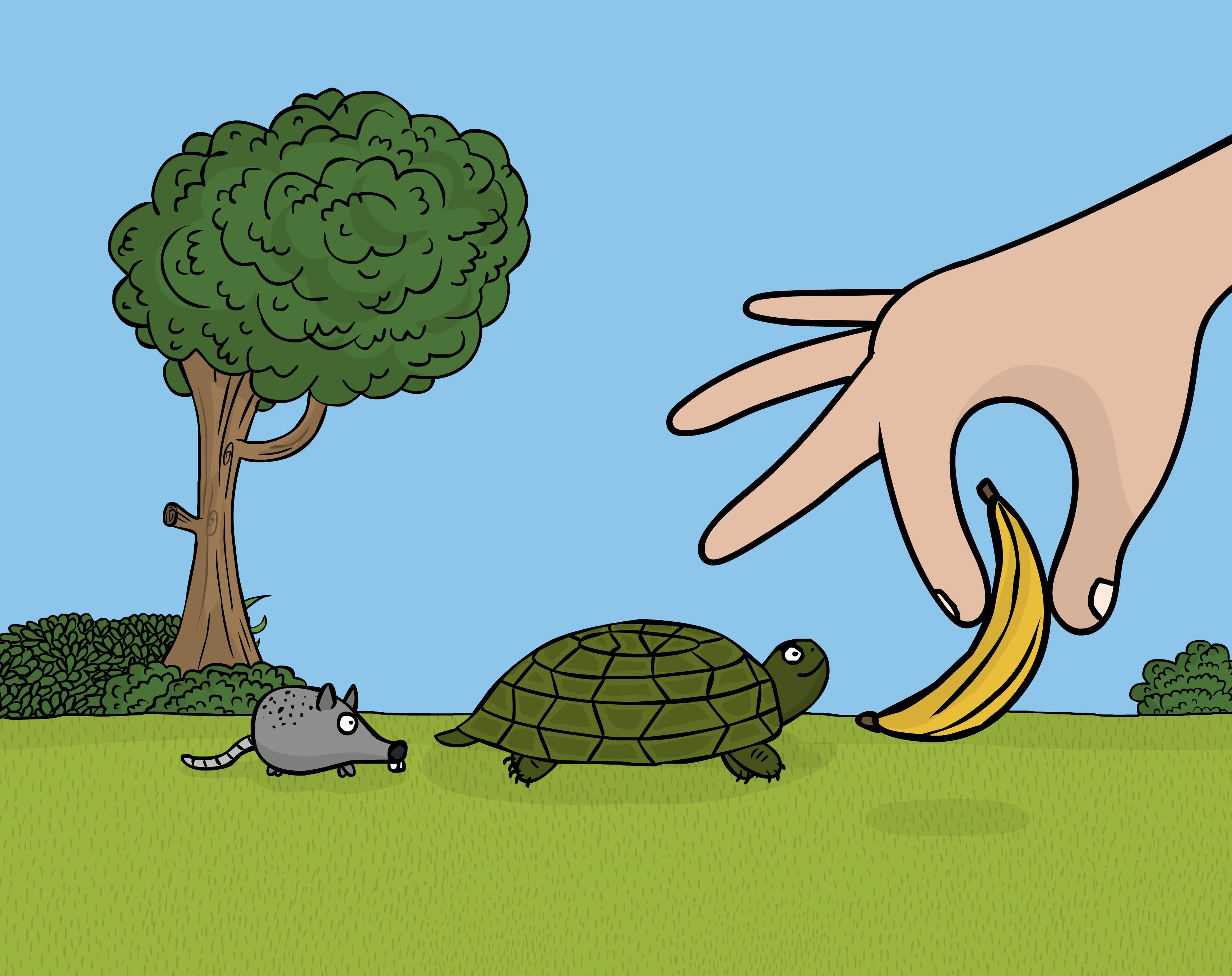 thumb1-small